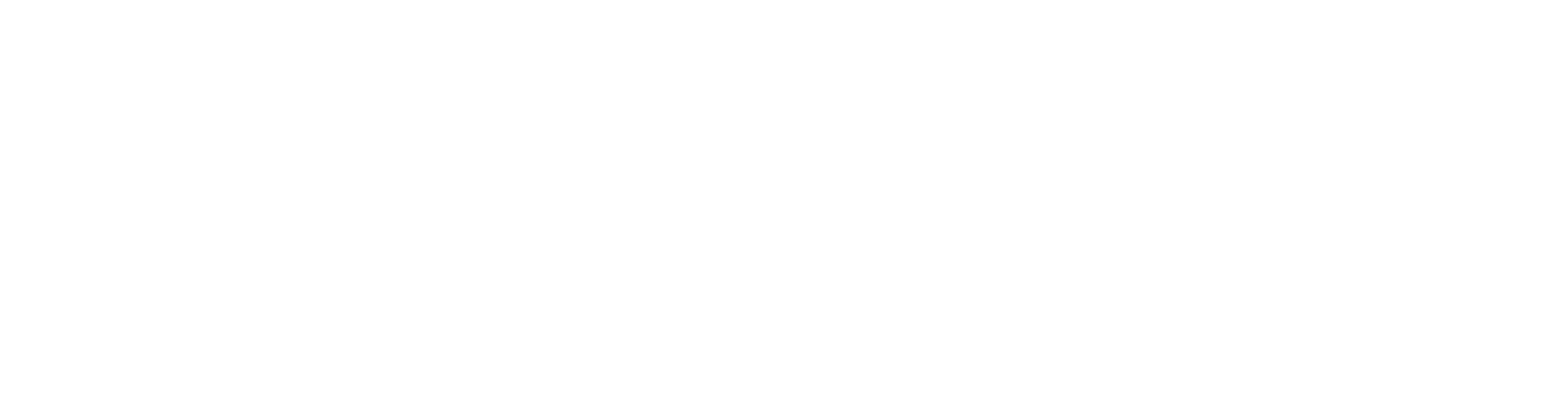 Dr_Wirth_Logo_Text_DE_final
