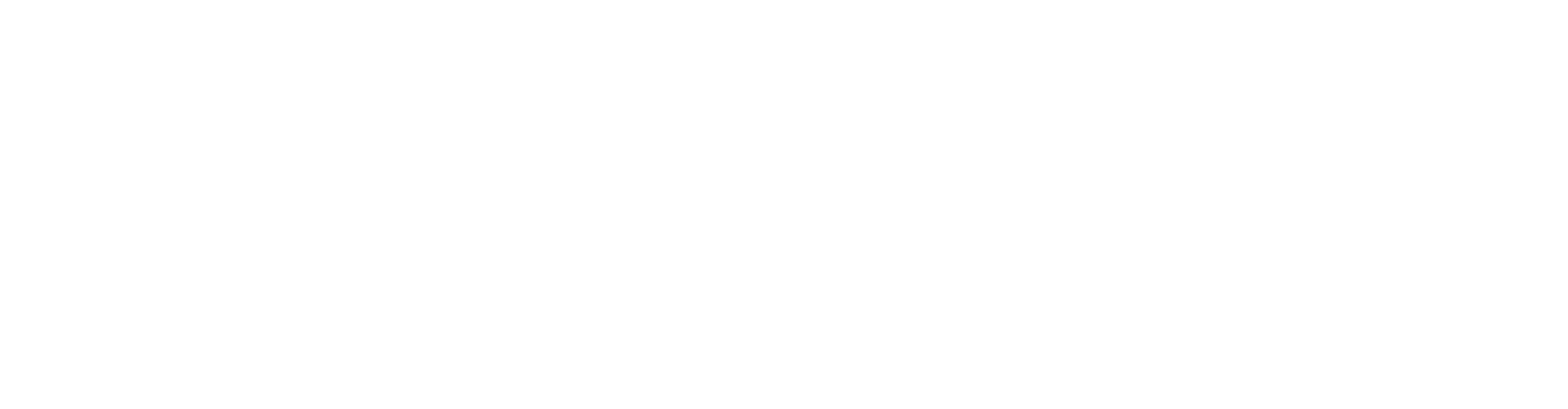 Dr_Wirth_Logo_Text_FR_final